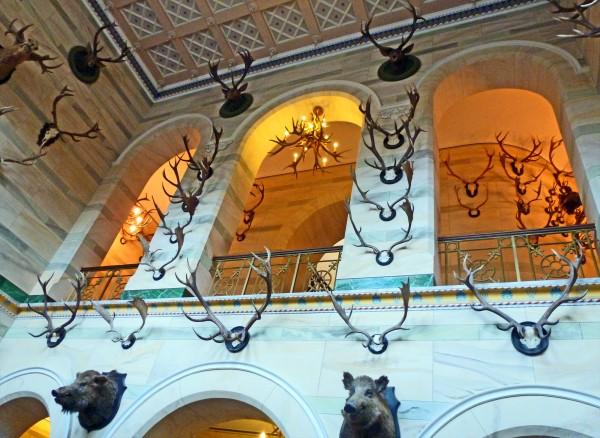 Jagdschloss Granitz - Eingangshalle